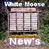 White Moose Road New's & Event's. The Best Road In All Of Sioux Narrows Township By Far !!